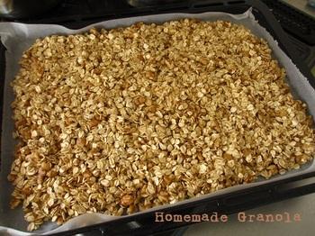 20130730 granola1.jpg